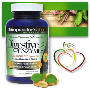 GI-Digestive Enzymes G-I Ezze-24 Advanced<br>With Herbs and Enzymes for Optimal Digestive Support