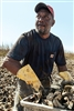 Carhartt - Men's Workwear Pocket Short Sleeve T-shirt. CTK87