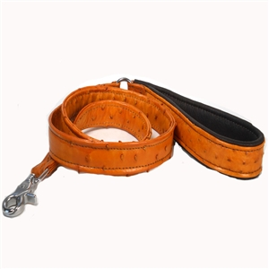 Genuine Custom Ostrich Collars & Leashes