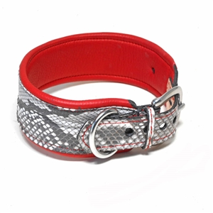 Python Collars & Leashes