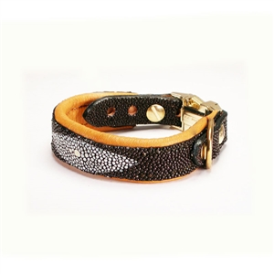 The Luxury Sting Ray Collar