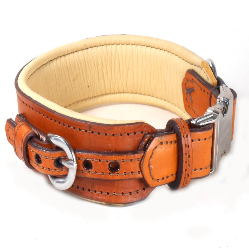 Unique Dog Collars And Leashes