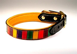 Jasper Classic Leather Rainbow Collar
