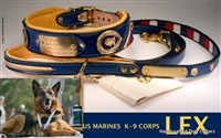 SPECIAL THEME COLLARS & LEASHES