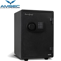 Amsec FS149E5LP Fire Safe