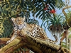 "GICLEE PRINT ""JAGUAR CUB AND THE HUMMINGBIRD"""