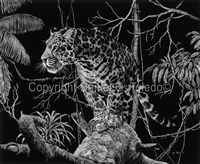 "SCRATCHBOARD PRINT ""EL TIGRE OF THE MATO GROSSO"""