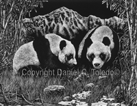 "SCRATCHBOARD PRINT ""A GENTLE APPROACH"""