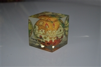 Plastic cube with Globe inside