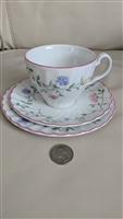 Johnson Brothers Summer Chintz pattern plates cup