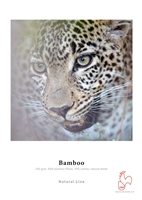 "Hahnemuhle Bamboo 290gsm 11""x17"" - 25 Sheets"