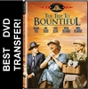 The Trip To Bountiful DVD 1985