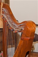 Roosebeck Minstrel Harp, 29 Strings, 5 Panel, Sheesham, Chelby Levers