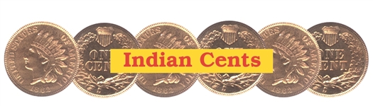 Fantastic Indian Cent Hoard