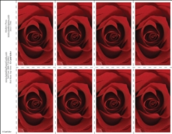 656-r Red Rose Top View 8-Up Prayer Card