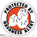 Havanese Decal