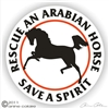 Arabian Decal