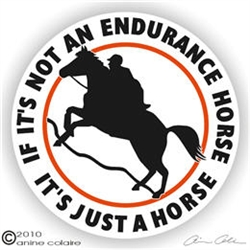 Endurance Horse Trailer Decal