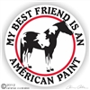 American Paint Vinyl Decal