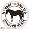 Quarter Horse Vinyl Decal