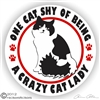 Black & White Kitty Window Decal