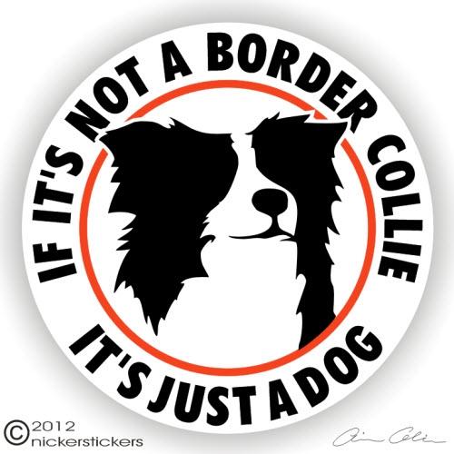 Sticker Breed Dog Border Collie No 4