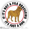 Fila Brasilerio Decal