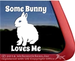 Some Bunny Loves Me Dwarf Rabbit Window Decal
