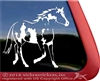 Overo American Paint Window Decal