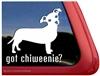 Got Chiweenie Dog iPad Car Truck RV Window Decal Sticker