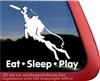 Australian Shepherd Frisbee Disc Dog Car Truck RV Window Decal