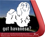 Got Havanese Vinyl Adhesive Window Dog Decal Sticker