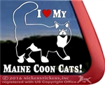 Maine Coon Window Decal
