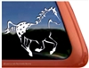 Custom Appaloosa Window Decal