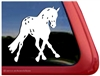 Custom Appaloosa Dressage Horse Side Pass Vinyl iPad Car Truck RV Window Decal Sticker