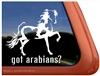 Arabian Pinto Horse Trailer Window Decal