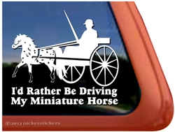 Miniature Appaloosa Driving Window Decal