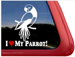 Masked Parrot Window Decal