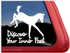 Foal Horse Trailer Window Decal