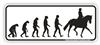 Evolution Dressage Bumper Sticker