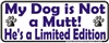 Limited Edition Male Bumper Sticker