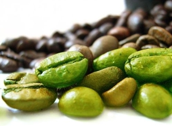 Green Coffee Beans - Tarrazu