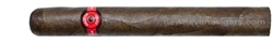 Fausto FT166 Short Churchill Box of 25