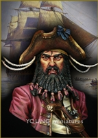 YH1823 - BLACK BEARD 1718 Queen Anne's Revenge , 1/9 scale bust