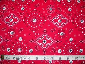 Dirty Girl Gaiters : DIRTY RED BANDANA