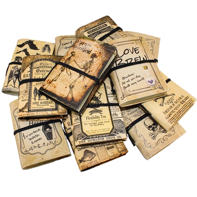 Lotions & Potions Mini Journals