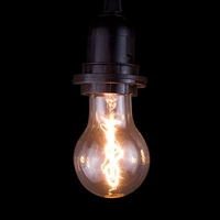 Antique Filament Edison Light Bulb Spiral