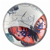 Glass Paperweight Red Butterfly