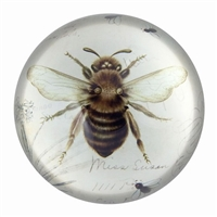 Glass Paperweight Bee Print