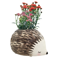 Haley Hedgehog Ceramic Planter
